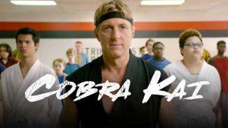 Το Cobra Kai κερδίζει καθημερινά κοινό και κριτικούς! (Και δικαίως!)